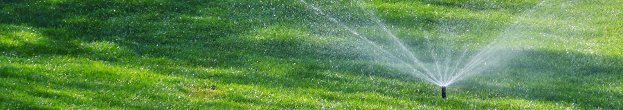 a lawn maintained by our Columbia sprinkler repair team